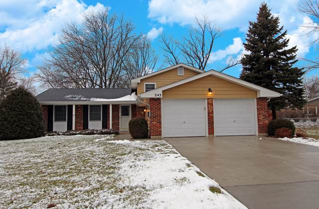 243 Wellington Drive, Crystal Lake, IL 60014 (MLS #10612705) :: Property Consultants Realty