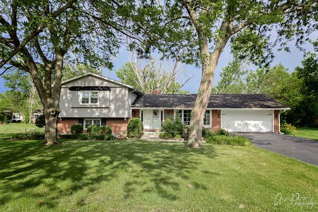 103 Thorobred Lane, Sleepy Hollow, IL 60118 (MLS #10612803) :: Angela Walker Homes Real Estate Group