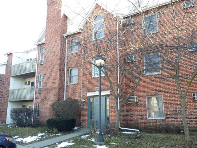 1382 Cunat Court 3-C, Lake In The Hills, IL 60156 (MLS #10612815) :: Lewke Partners