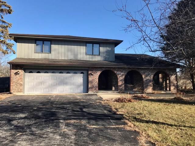 1810 Windsor Lane, New Lenox, IL 60451 (MLS #10612826) :: The Wexler Group at Keller Williams Preferred Realty