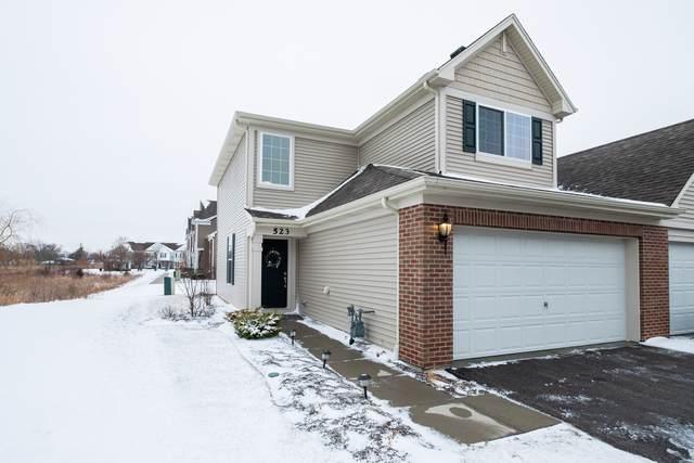 523 Silverton Drive, Grayslake, IL 60030 (MLS #10612960) :: Littlefield Group