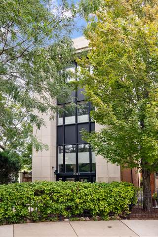 2521 N Bosworth Avenue, Chicago, IL 60614 (MLS #10613127) :: Property Consultants Realty