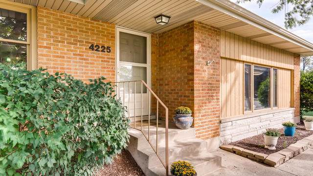 4225 Lacey Road, Downers Grove, IL 60515 (MLS #10613129) :: Century 21 Affiliated
