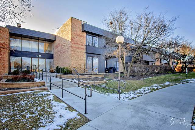 1325 N Sterling Avenue #202, Palatine, IL 60067 (MLS #10613249) :: John Lyons Real Estate