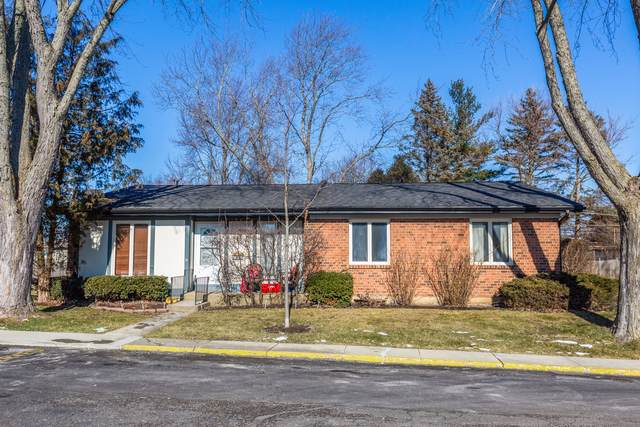 3 Tuileries Place, Elgin, IL 60123 (MLS #10613264) :: Berkshire Hathaway HomeServices Snyder Real Estate