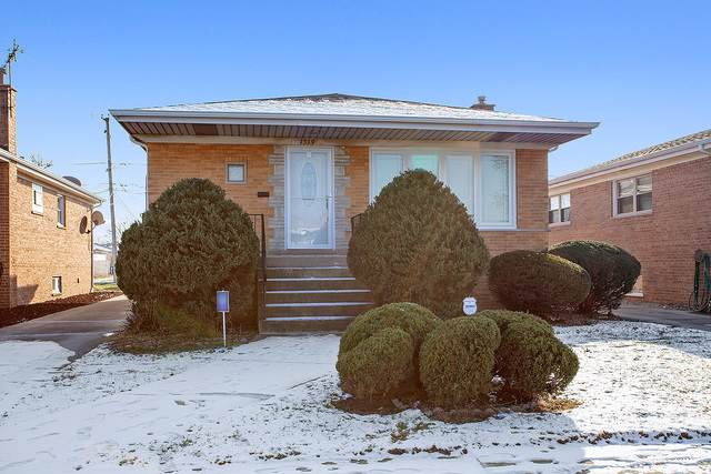 1319 Memorial Drive, Calumet City, IL 60409 (MLS #10613284) :: Property Consultants Realty