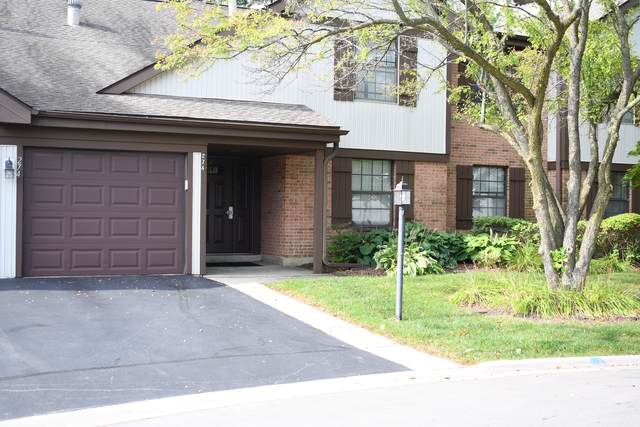 274 Buckingham Court D2, Schaumburg, IL 60193 (MLS #10613348) :: John Lyons Real Estate