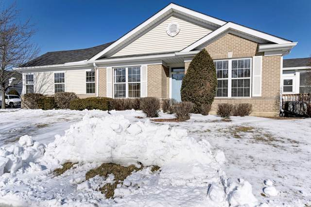 21146 W Cypress Lane, Plainfield, IL 60544 (MLS #10613374) :: Helen Oliveri Real Estate