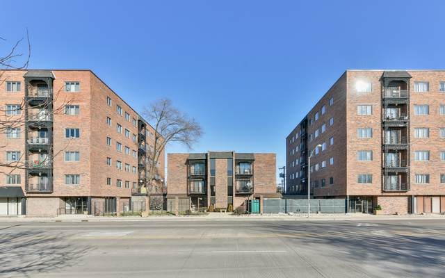 7908 W North Avenue #303, Elmwood Park, IL 60707 (MLS #10613593) :: Suburban Life Realty