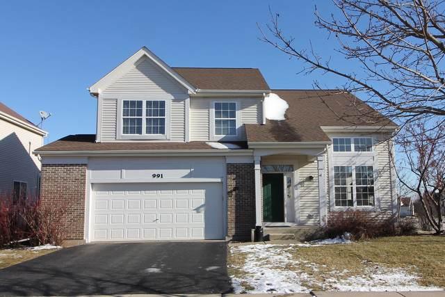991 S Arlington Drive, Round Lake, IL 60073 (MLS #10613657) :: John Lyons Real Estate