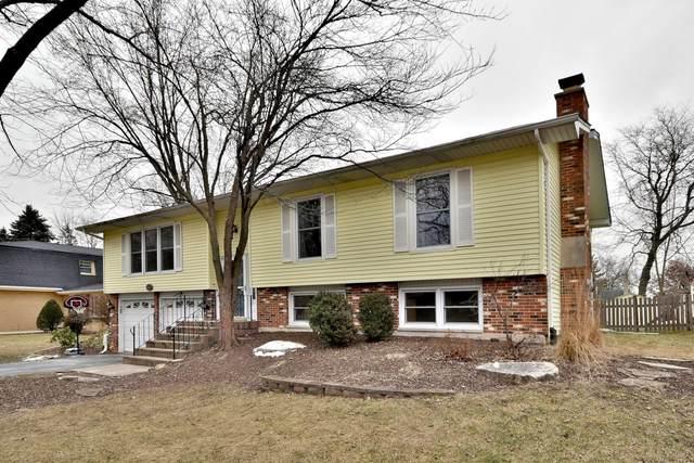 6671 Barrett Street, Downers Grove, IL 60516 (MLS #10613667) :: The Dena Furlow Team - Keller Williams Realty