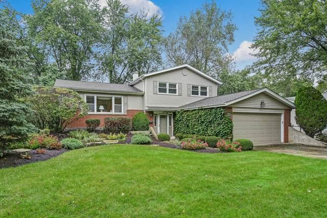 514 Maple Lane, Darien, IL 60561 (MLS #10613680) :: Angela Walker Homes Real Estate Group