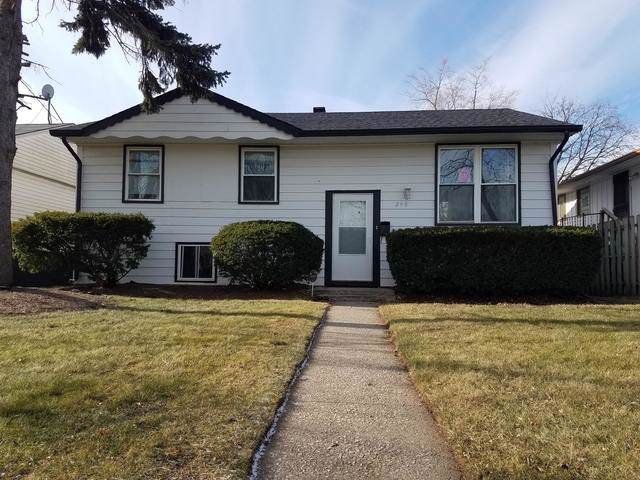 298 Clyde Avenue, Calumet City, IL 60409 (MLS #10613682) :: Property Consultants Realty