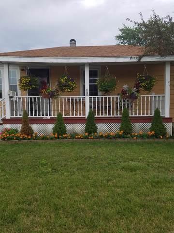 6647 W 167th Street, Tinley Park, IL 60477 (MLS #10613719) :: John Lyons Real Estate