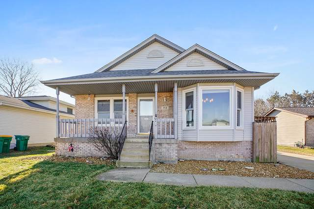 713 Rosanne Street, Lockport, IL 60441 (MLS #10613946) :: The Perotti Group | Compass Real Estate
