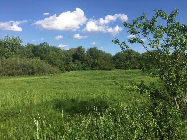 000 Honeysuckle Road, Earlville, IL 60518 (MLS #10614051) :: The Wexler Group at Keller Williams Preferred Realty