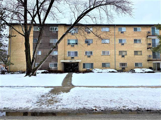 919 N Boxwood Drive #406, Mount Prospect, IL 60056 (MLS #10614060) :: Berkshire Hathaway HomeServices Snyder Real Estate