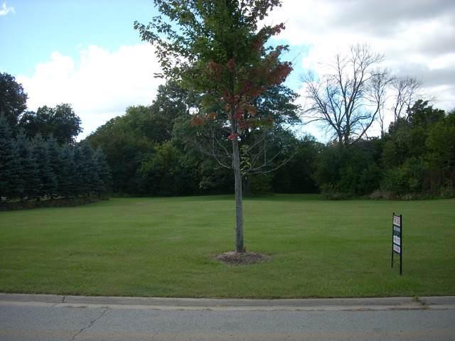 000 Skender Court S, Homer Glen, IL 60491 (MLS #10614088) :: The Wexler Group at Keller Williams Preferred Realty