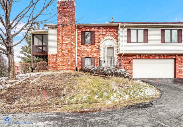 11207 Cameron Parkway, Orland Park, IL 60467 (MLS #10614142) :: Touchstone Group
