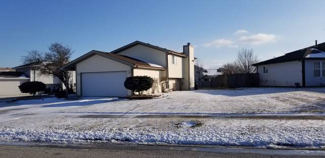 61 White Oaks Road, Matteson, IL 60443 (MLS #10614217) :: John Lyons Real Estate