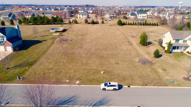 Lot 15 Woodview Street, Plano, IL 60545 (MLS #10614267) :: Littlefield Group