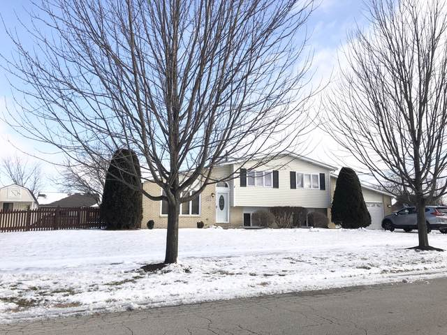 1620 Connor Street, Lockport, IL 60441 (MLS #10614289) :: Angela Walker Homes Real Estate Group