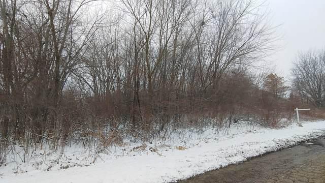 42314 N Hanks Avenue, Zion, IL 60099 (MLS #10614324) :: Angela Walker Homes Real Estate Group