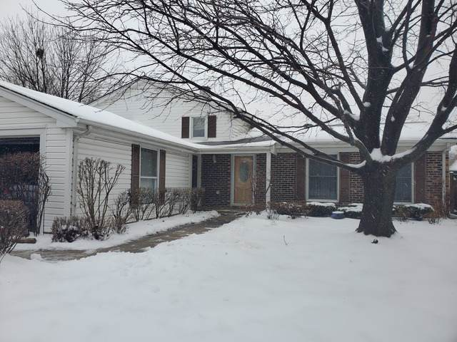 782 Lehigh Lane, Buffalo Grove, IL 60089 (MLS #10614446) :: Touchstone Group