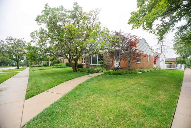 390 N Wolf Road, Des Plaines, IL 60016 (MLS #10614488) :: Ryan Dallas Real Estate