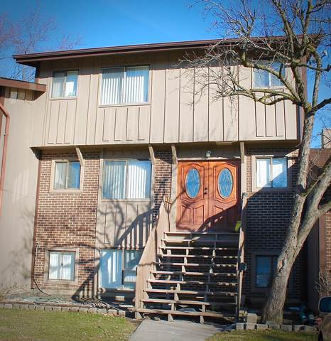 758 Circle Drive, Roselle, IL 60172 (MLS #10614770) :: Touchstone Group