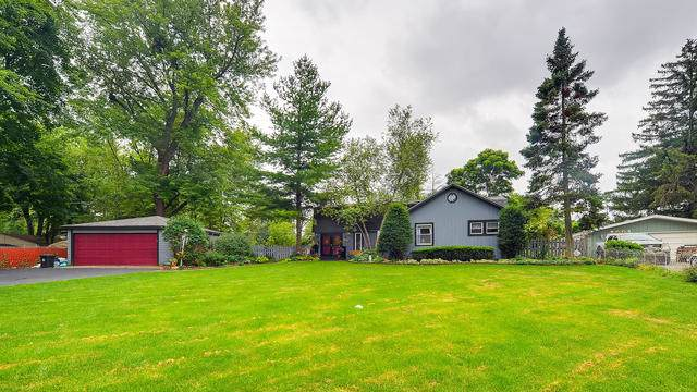 111 Crescent Road, Fox River Grove, IL 60021 (MLS #10614793) :: Ryan Dallas Real Estate