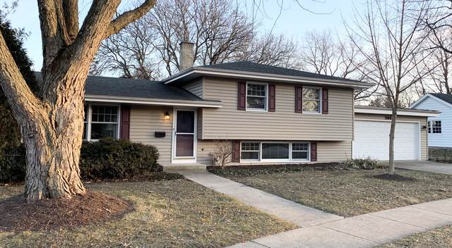 204 Sycamore Drive, Naperville, IL 60540 (MLS #10614874) :: Angela Walker Homes Real Estate Group