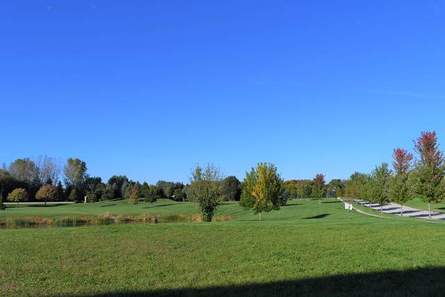 Lot #56 Goldenrod Drive, St. Charles, IL 60175 (MLS #10614913) :: The Wexler Group at Keller Williams Preferred Realty