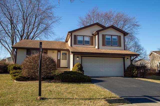 746 Cardinal Lane, Elk Grove Village, IL 60007 (MLS #10615039) :: Century 21 Affiliated