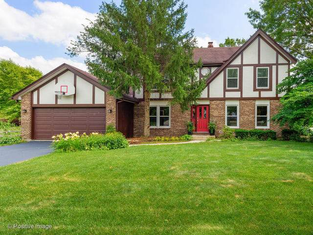 1391 Hickory Court, Downers Grove, IL 60515 (MLS #10615041) :: Century 21 Affiliated