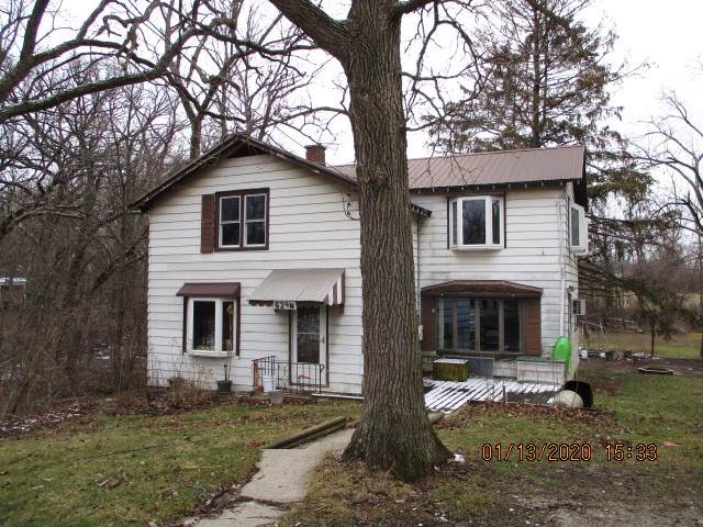 624 W Goodenow Road, Beecher, IL 60401 (MLS #10615144) :: Angela Walker Homes Real Estate Group