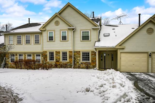 202 Dublin Lane Z2, Schaumburg, IL 60194 (MLS #10615239) :: The Wexler Group at Keller Williams Preferred Realty