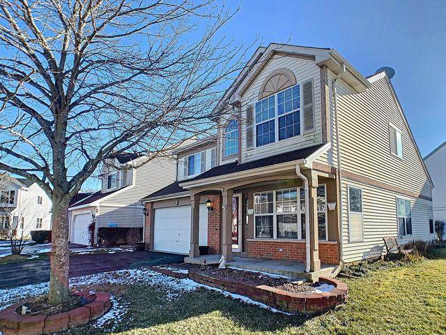 6 Redbud Court, Lake In The Hills, IL 60156 (MLS #10615295) :: The Mattz Mega Group