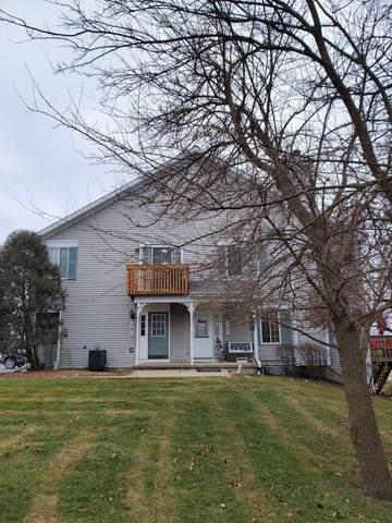 303 S Collins Street, South Elgin, IL 60177 (MLS #10615412) :: Janet Jurich