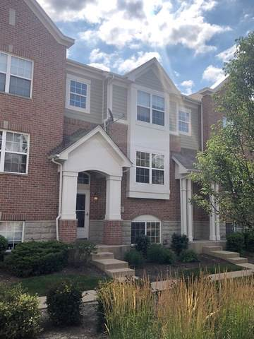 42 Grace Court, Lemont, IL 60439 (MLS #10615451) :: The Wexler Group at Keller Williams Preferred Realty