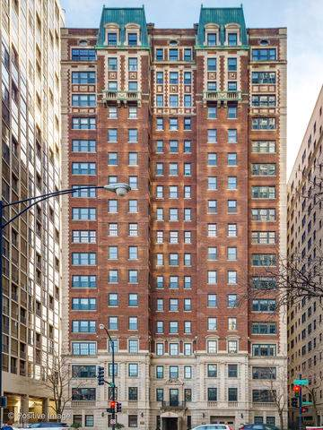 399 W Fullerton Parkway 8E, Chicago, IL 60614 (MLS #10615501) :: Property Consultants Realty