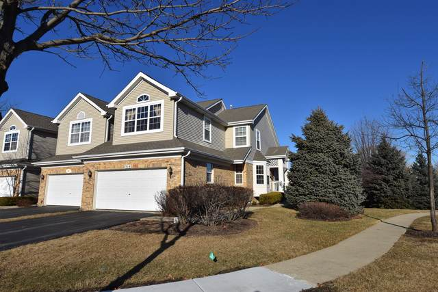 314 Lucille Lane, Schaumburg, IL 60193 (MLS #10615551) :: The Wexler Group at Keller Williams Preferred Realty