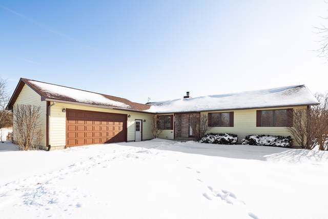 925 Amber Lane, Lake Villa, IL 60046 (MLS #10615605) :: Property Consultants Realty