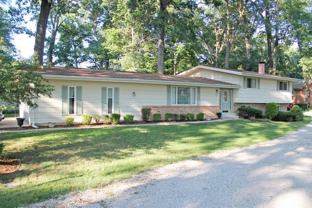 127 Lakeside Drive, Danville, IL 61832 (MLS #10615881) :: Property Consultants Realty