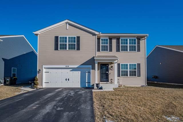 1014 Chestnut Drive, Pingree Grove, IL 60140 (MLS #10615932) :: John Lyons Real Estate