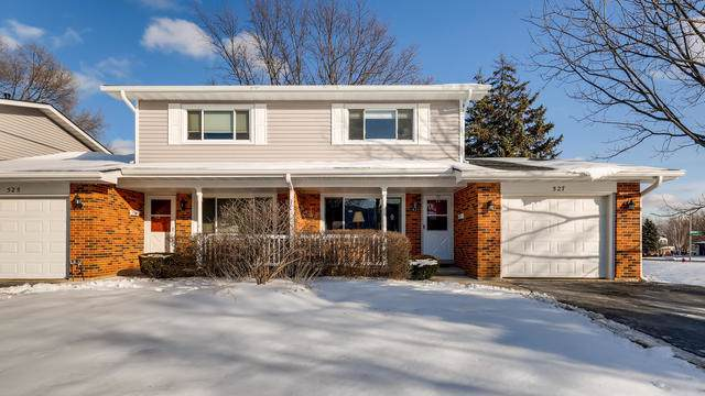 527 Queens Court, Schaumburg, IL 60193 (MLS #10616018) :: The Perotti Group | Compass Real Estate