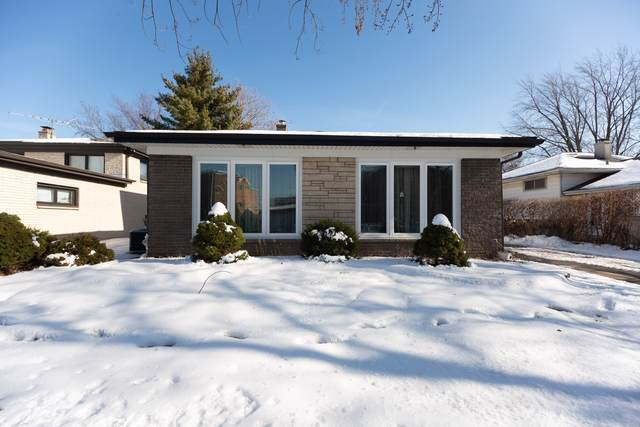 1153 Willson Drive, Des Plaines, IL 60016 (MLS #10616046) :: Century 21 Affiliated