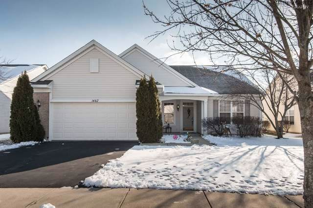 1467 W Grand Haven Road, Romeoville, IL 60446 (MLS #10616160) :: Property Consultants Realty