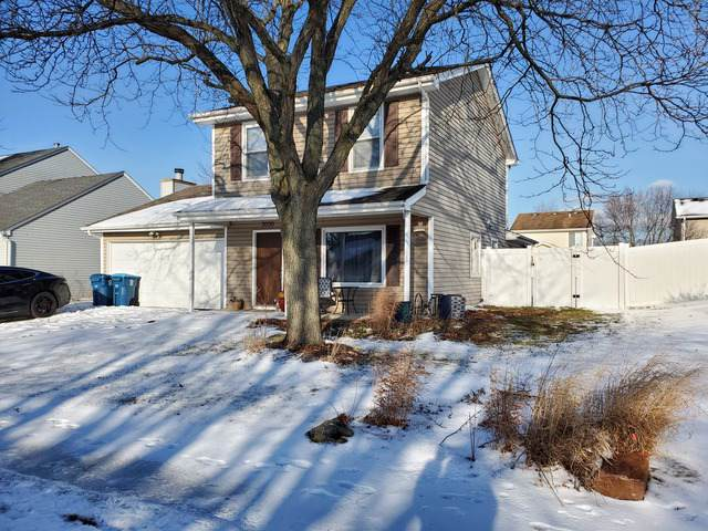 3050 Long Grove Lane, Aurora, IL 60504 (MLS #10616184) :: Property Consultants Realty