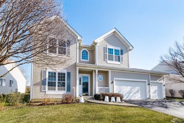 457 Raintree Drive, Oswego, IL 60543 (MLS #10616276) :: The Dena Furlow Team - Keller Williams Realty